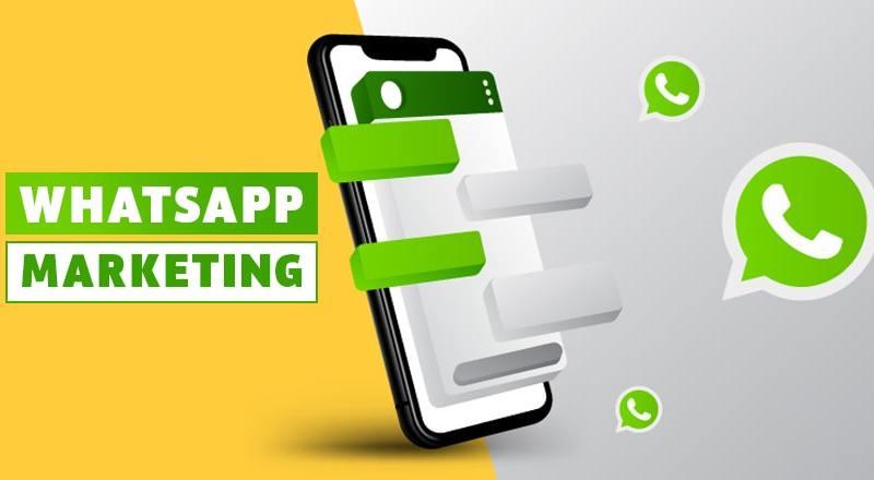 Need WhatsApp Marketing