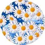 Купить оптом бумажные тарелки