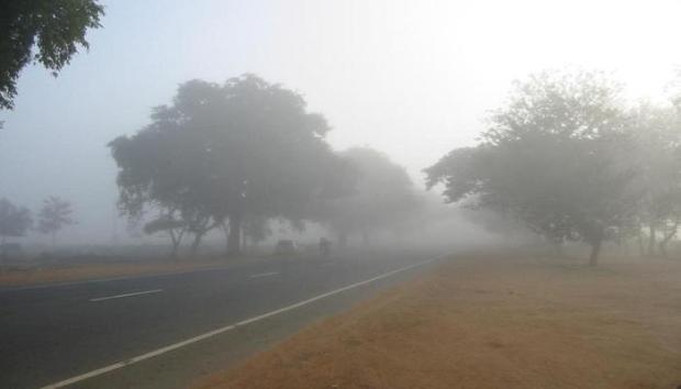 97221-fogwinter