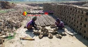 চুনতি ইউনিয়নের সিবিএম ইটভাটায় কর্মরত শিশু শ্রমিক