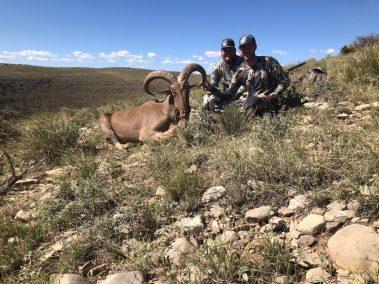 Barbary-Sheep-Hunt