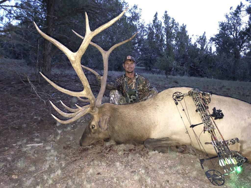 New Mexico Archery Elk Hunting