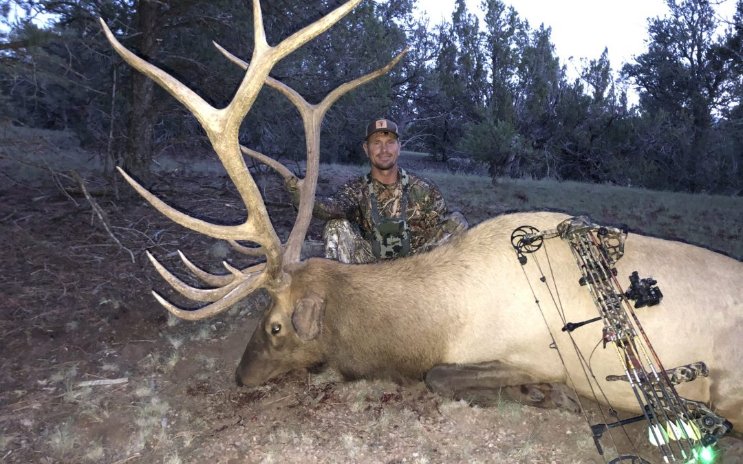 New Mexico Archery Elk Hunting Recap