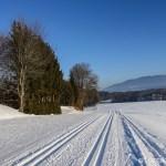 Langlauf am Hochberg