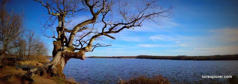 Parc Naturel de la Brenne à visiter pendnt les vacances de Noêl