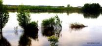 Découvrir la Loire en vidéo