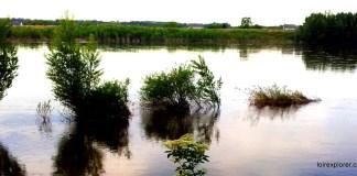 Balade sur le bord de Loire Montlouis sur Loire