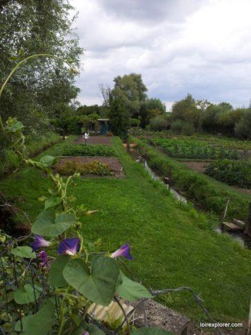 Fête des marais de Bourges visite insolite des jardins potagers en barque
