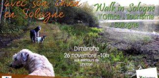 Randonner avec son chien en Sologne avec l'office de tourisme de Sologne bureaux de Salbris et Lamotte et Walk in Sologne