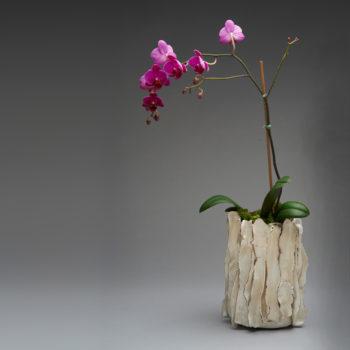 Image: Orchid Pot White - Lois sattler