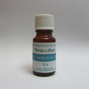 Solução Oleosa N.6 Hortelã