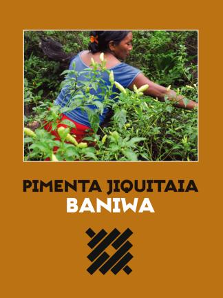 Livro: Pimenta Jiquitaia Baniwa-0