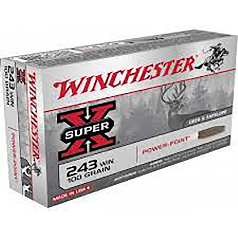 Mun. Winchester 243 Win 100 Gr PP_lojaamster