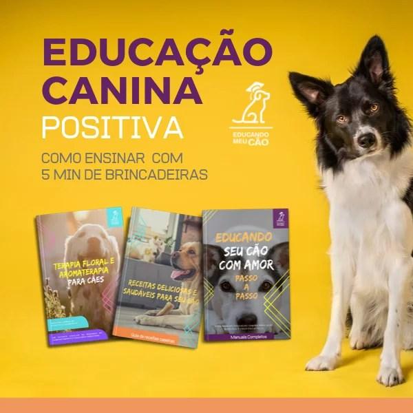 E-B00K - PROGRAMA DE EDUCAÇÃO CANINA