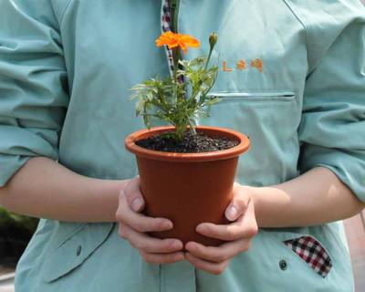 【殺処分された動物の骨に咲く花】殺処分0(ゼロ)を目指し高校生が取り組む「命の花プロジェクト」