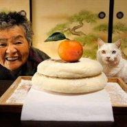 耳の不自由な猫とおばあちゃんの心温まる写真