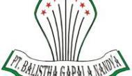 Permalink to Lowongan Kerja Bagian Staff Marketing dan Teknisi di PT. Balistha Gapala Nandya