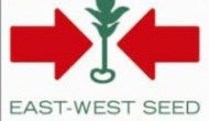 Permalink to Lowongan Kerja Bagian Finance and Accounting Officer di PT. East West Seed Indonesia