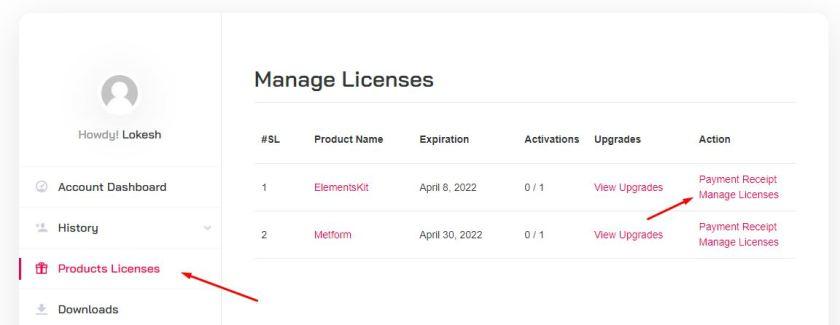 Elementskit License Activation