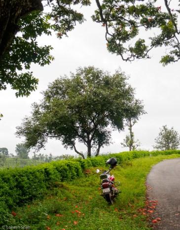 bikeridevalparai_215