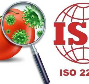 ISO 22000 Belgesi Nasıl Alınır