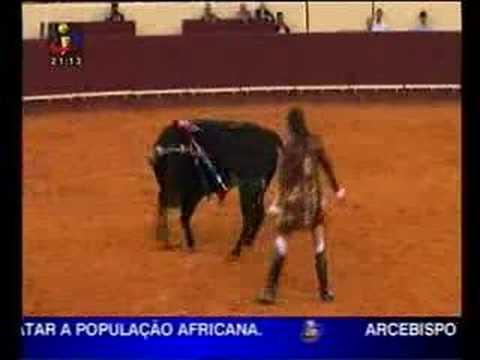 Cavaleiro João Salgueiro leva cornada em pleno campo pequeno