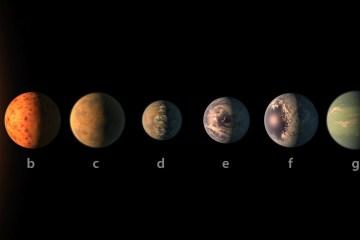 NASA descobre 7 planetas