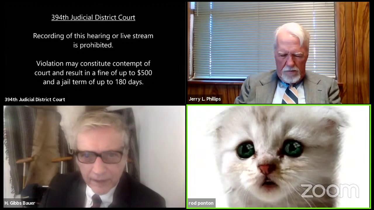 Reunião no Zoom, advogado com filtro de gato ativo durante tribunal