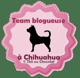 http://chokomag.com/team-blogueuse-a-chien/