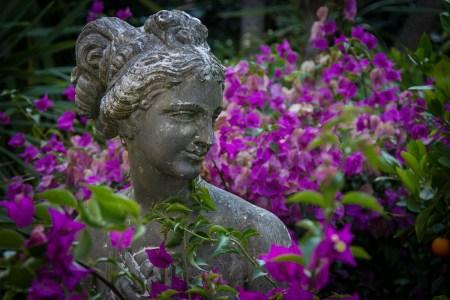 La menopausia no es una enfermedad, es una etapa llena de sabiduría.