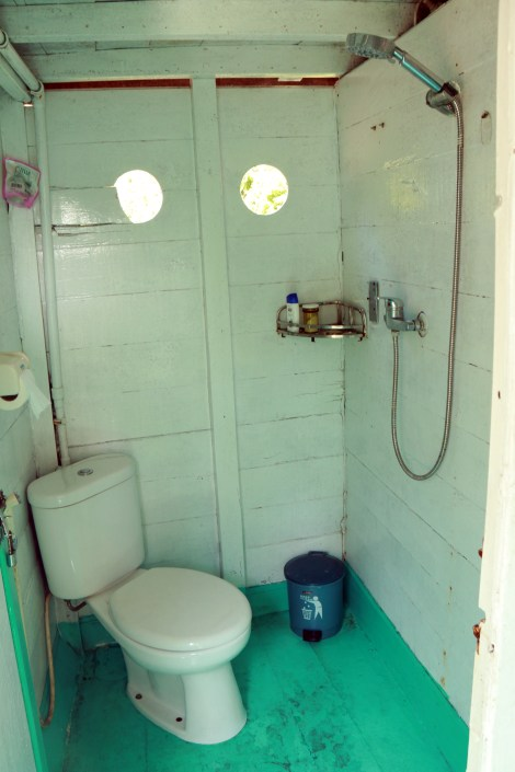 Our toilet (and shower)