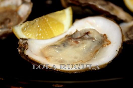 raw fresh oysters