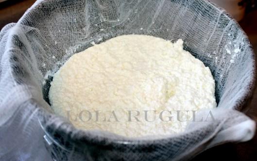 fresh homemade ricotta recipe lola rugula