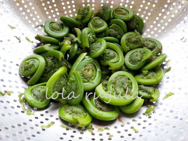 lola-rugula-how-to-cook-fiddleheads