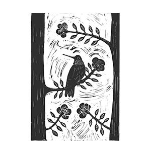 El colibrí del almendro