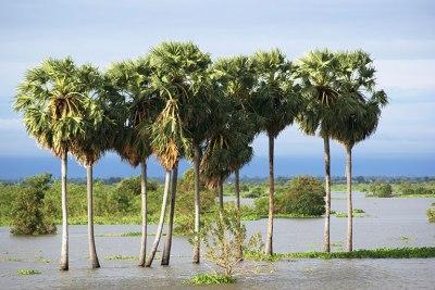 LOLEI TRAVEL – Tonle Sap Lake in Cambodia