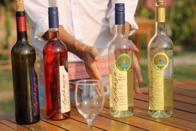 The Vineyard of Aythaya