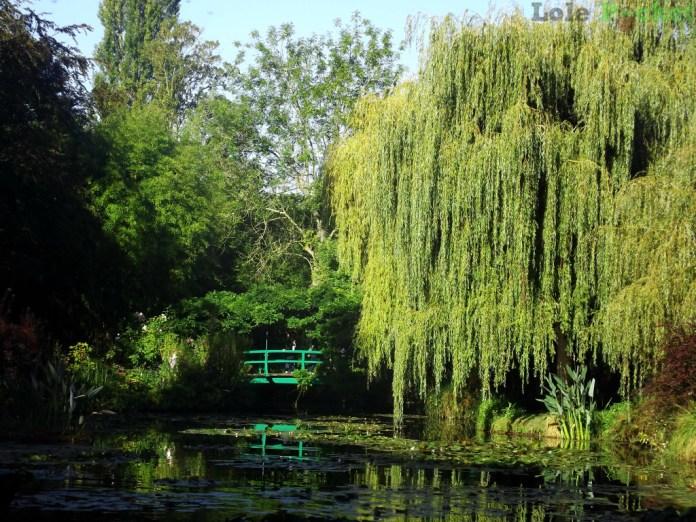 Jardin d'Eau e a ponte japonesa - Giverny