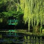 Jardin d'Eau - Giverny - capa