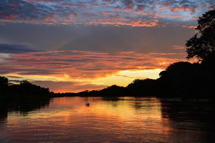 Pantanal - 2