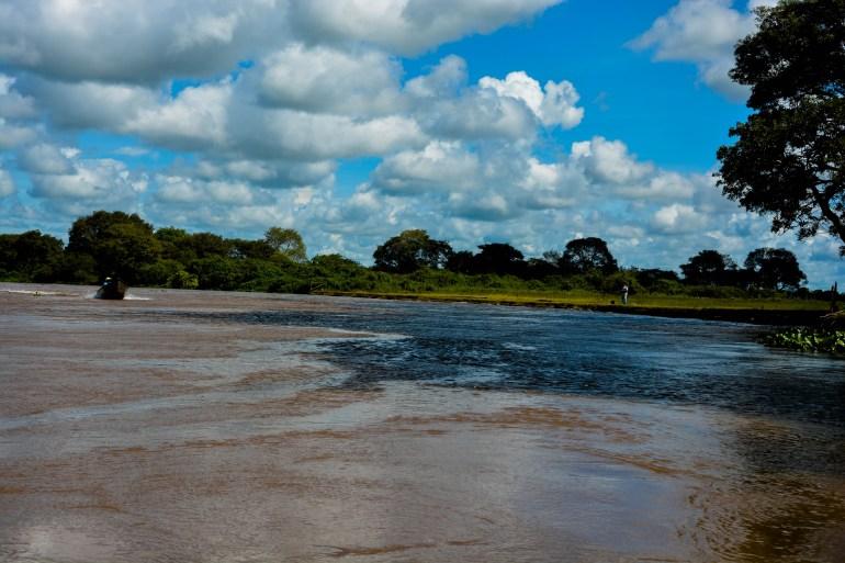 Pantanal - 7