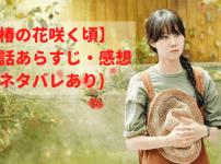 【椿の花咲く頃】19話あらすじ・感想(ネタバレあり)