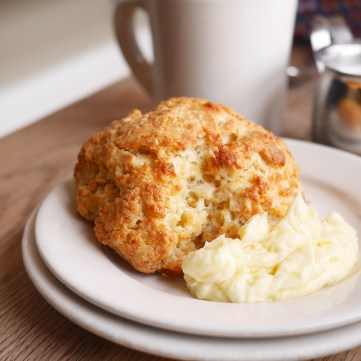 Best Buttermilk Biscuit from Plow San Francisco