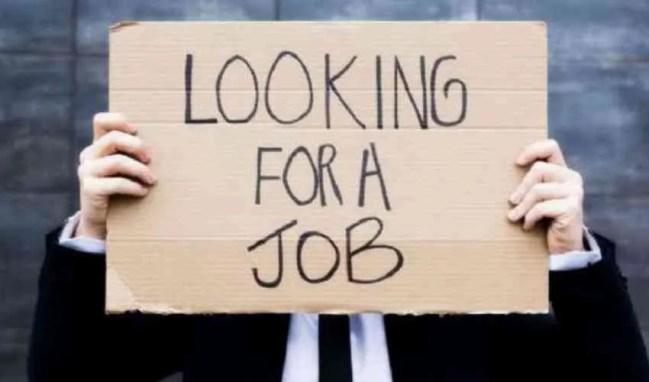 disoccupato Lolli Group