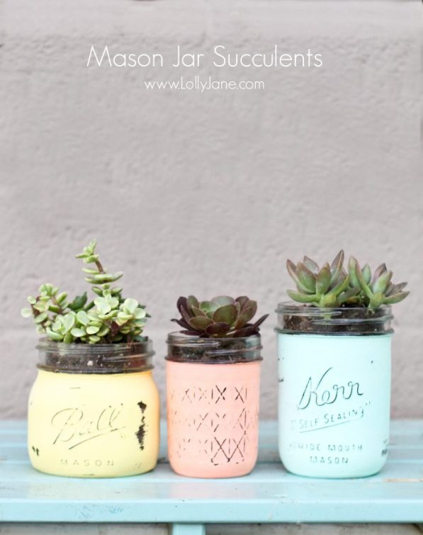 DIY Mason Jar Succulents | mason jar gift ideas