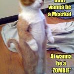 LOL Zombie Cats or Meerkats