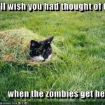 LOL Zombie Cats Hide In Grass