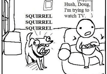 Doggie Wants The Squirrel