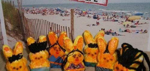 Jersey Shore Easter Peeps