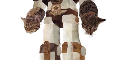 Cat Transformer